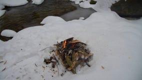 Fuoco sulla neve in foresta archivi video
