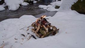 Fuoco sulla neve in foresta video d archivio