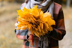 Fuoco sulle foglie gialle Donna castana nel parco di autunno con il cappotto e la sciarpa alla moda del plaid fotografia stock libera da diritti