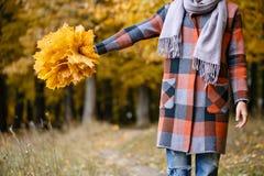 Fuoco sulle foglie gialle Donna castana nel parco di autunno con il cappotto e la sciarpa alla moda del plaid immagini stock