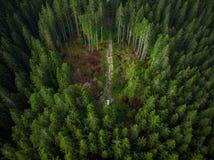 Fuori dall'avventura dell'automobile della strada sul sentiero forestale, vista del fuco Immagine Stock