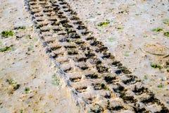 Fuori dalla pista del pneumatico dell'automobile della strada sulla spiaggia sabbiosa Fotografia Stock