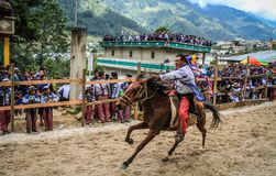 Fuori horserider piano, ippica di todos Santos, ¡ n, Huehuetenango, Guatemala di Todos Santos Cuchumatà immagine stock