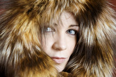 Fur Royalty Free Stock Images