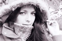 In fur Stock Photography