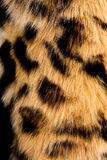 Fur. The fragment of leopard fur coat Royalty Free Stock Images