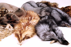 Fur Stock Images