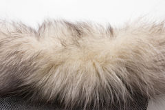 The fur of a Arctic, polar fox Fox. Texture. Stock photo Top view. Close-up vector illustration