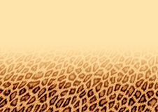 Fur background. Abstraction background of red fur. Illustration Stock Photography