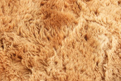 Fur background Royalty Free Stock Photo