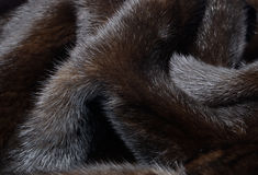 Fur background. Background of dark brown fur mink laid in folds Stock Photography