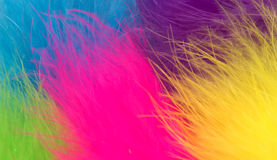 Fur Background Stock Photos