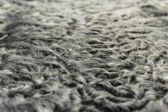 The fur is black karakul lambskin texture, background. The fur is black karakul lambskin texture Stock Photography