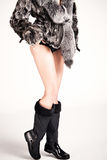 Fur and boots Stock Image