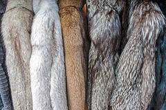 Fur Clothes Royalty Free Stock Photography