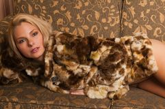 Fur coat Stock Photography