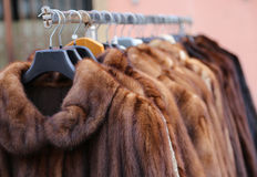 Fur coat very sofly in vintage style Stock Photos