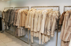 Fur coats royalty free stock photo