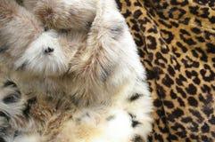 Fur coats Stock Images