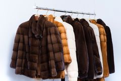 Fur coats on hangers in the interior.  royalty free stock images