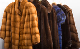 Fur coats Royalty Free Stock Photography
