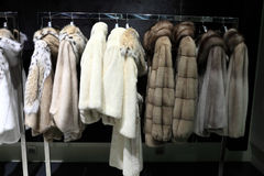 Fur coats on the hangers Stock Images