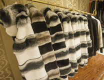 Fur coats hanging on a rail Royalty Free Stock Photos