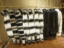 Fur coats hanging on a rail Stock Photography