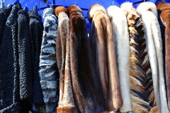 Fur coats for women. Placed on hangers royalty free stock image