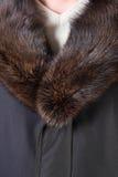 Fur collar. Man's fur collar of a winter jacket Royalty Free Stock Photography