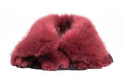 Fur collar Stock Photo