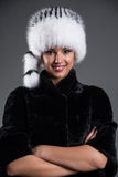 Fur collection Royalty Free Stock Image