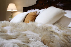 Fur coverlet. In dedroom royalty free stock images