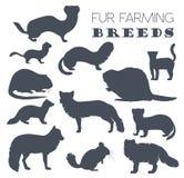 Fur farming. Flat design Royalty Free Stock Photography