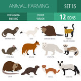 Fur farming. Flat design. Vector illustration Royalty Free Stock Photos