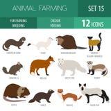 Fur farming. Flat design Royalty Free Stock Photos