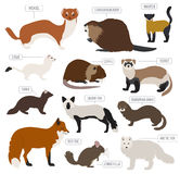 Fur farming. Flat design. Vector illustration Stock Photography