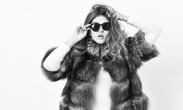 Fur fashion concept. Female brown fur coat. Fur store model enjoy warm in soft fluffy coat with collar. Woman wear. Sunglasses and hairstyle posing mink or stock photos