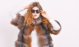Fur fashion concept. Female brown fur coat. Fur store model enjoy warm in soft fluffy coat with collar. Woman wear. Sunglasses and hairstyle posing mink or royalty free stock photo