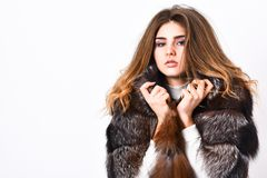 Fur fashion concept. Winter elite luxury clothes. Female brown fur coat. Fur store model enjoy warm in soft fluffy coat. With collar. Woman makeup and hairstyle stock image