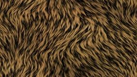 Fur generated seamless loop video stock footage