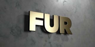 Fur - Gold sign mounted on glossy marble wall  - 3D rendered royalty free stock illustration Stock Images