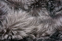 Fur Royalty Free Stock Image
