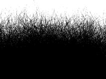 Fur hair grass gradient in black over over white Stock Photos
