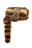 Fur hat. Fur Crockett hat with a racoon tail isolated on white background Stock Photos