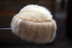 Fur hat Stock Photos