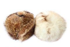 Fur headdress Stock Image