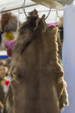 Fur hides Royalty Free Stock Photo