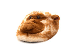 Fur house slipper Stock Image
