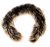 A fur isolated. On the white background Royalty Free Stock Photo